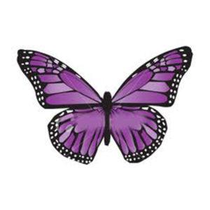 mariposa-morada