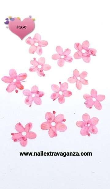 Dry Flowers #109