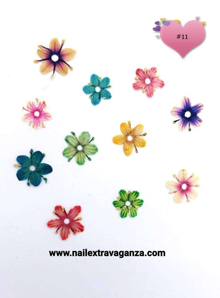 Dry Flower #11