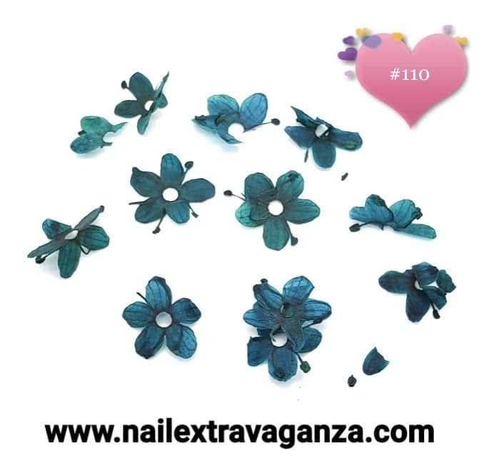 Dry Flowers #110