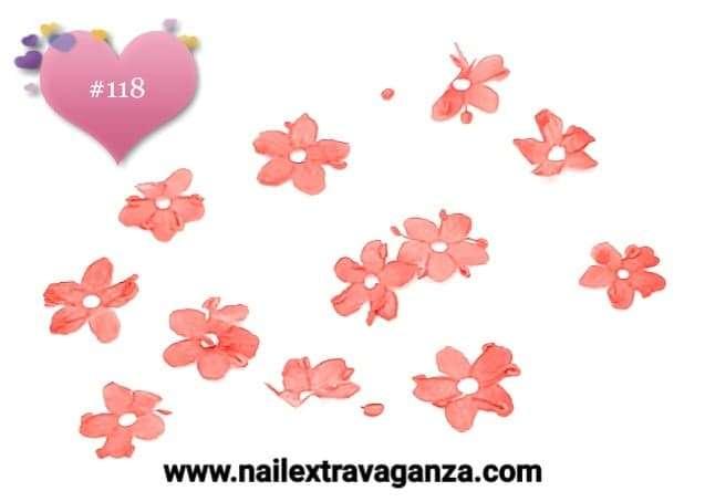 Dry Flowers #118