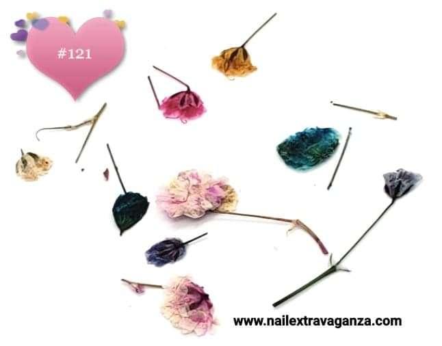 Dry Flower #121