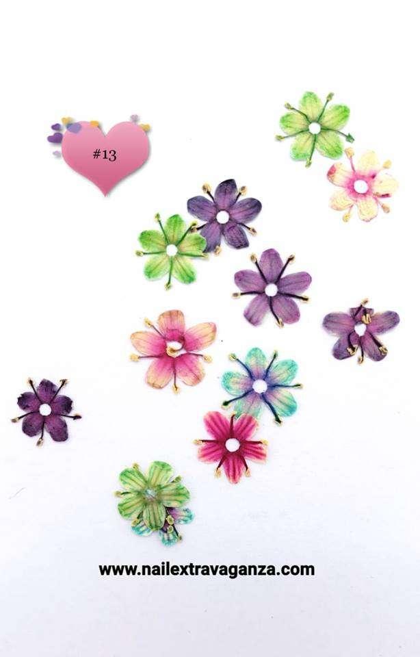 Dry Flower #13